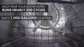 How does my Dishwasher function? Take an Inside Look