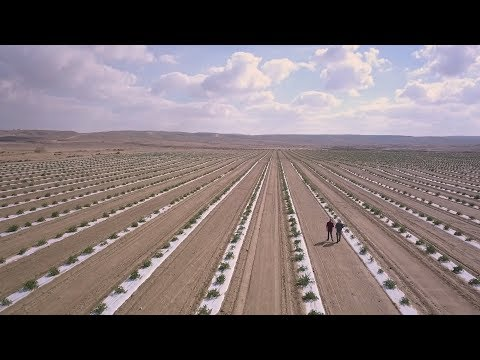 Agriculture in the Negev: Today's Desert Pioneers [2018]