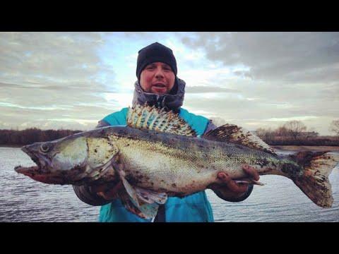 Рыбалка на Москва реке. Место где клюют трофеи!!!