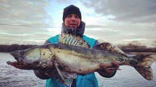Рыбалка на Москва реке Место где клюют трофеи