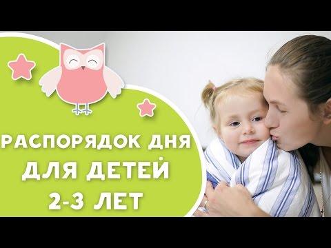 Распорядок дня для детей 2-3 лет [Любящие мамы]