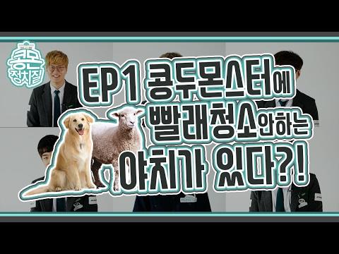 [콩몬정치질] season 2ㅣ EP01. 콩두몬스터에 빨래청소안하는 개X아치가 있다?!