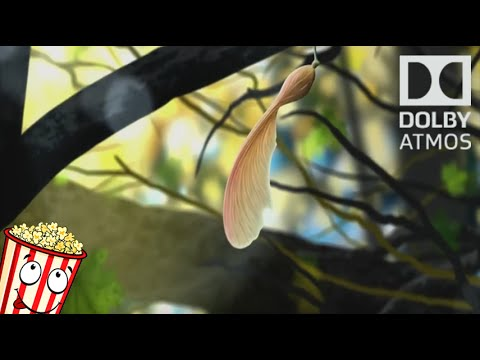 Dolby Atmos - Leaf - (With Download)