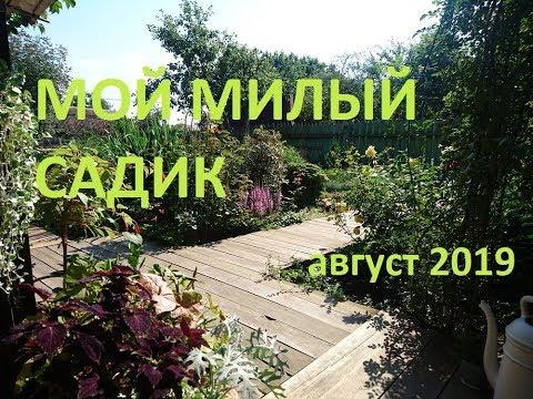 Садовый архив Полный обзор сада 20.08.19.