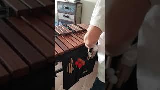 Adams Soloist xylophone example