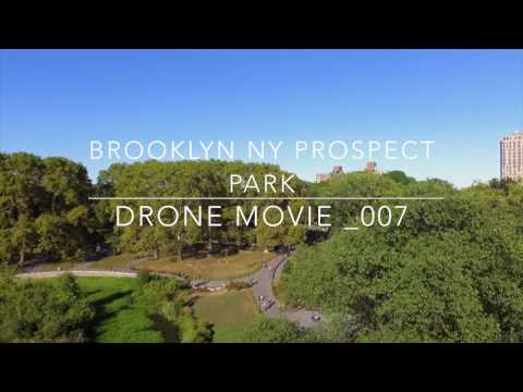A Bird View of Prospect  Park NYC