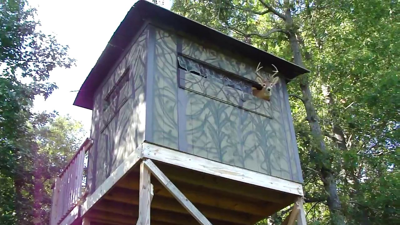 Hunting shack invaded by crazy deer too damn funny wow for Hunting shack designs
