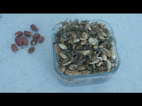 Оладьи из кабачков - Рецепты моей бабушки /