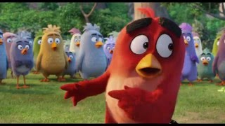 'The Angry Birds Movie' (2016) Trailer #3