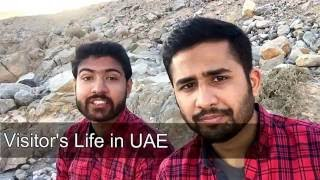 Visitor Guide in UAE-Dubai to hunt a job | Find a job