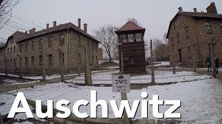 Auschwitz in the snow (2018)