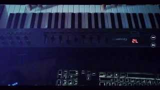 SVD ft. Carol Lee - Love Is Darkness (Basto Remix Piano Cover)