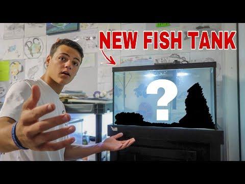 My NEW *AQUARIUM* In FISH ROOM!!!