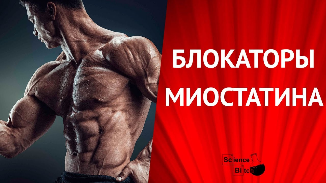 How You Can Do бодибилдинг программы тренировок 2 раза в неделю In 24 Hours Or Less For Free