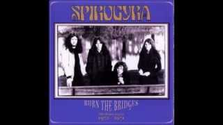 Watch Spirogyra The Forest Of Dean video