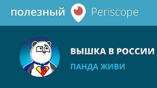 Нужно ли высшее образование в России / Панда
