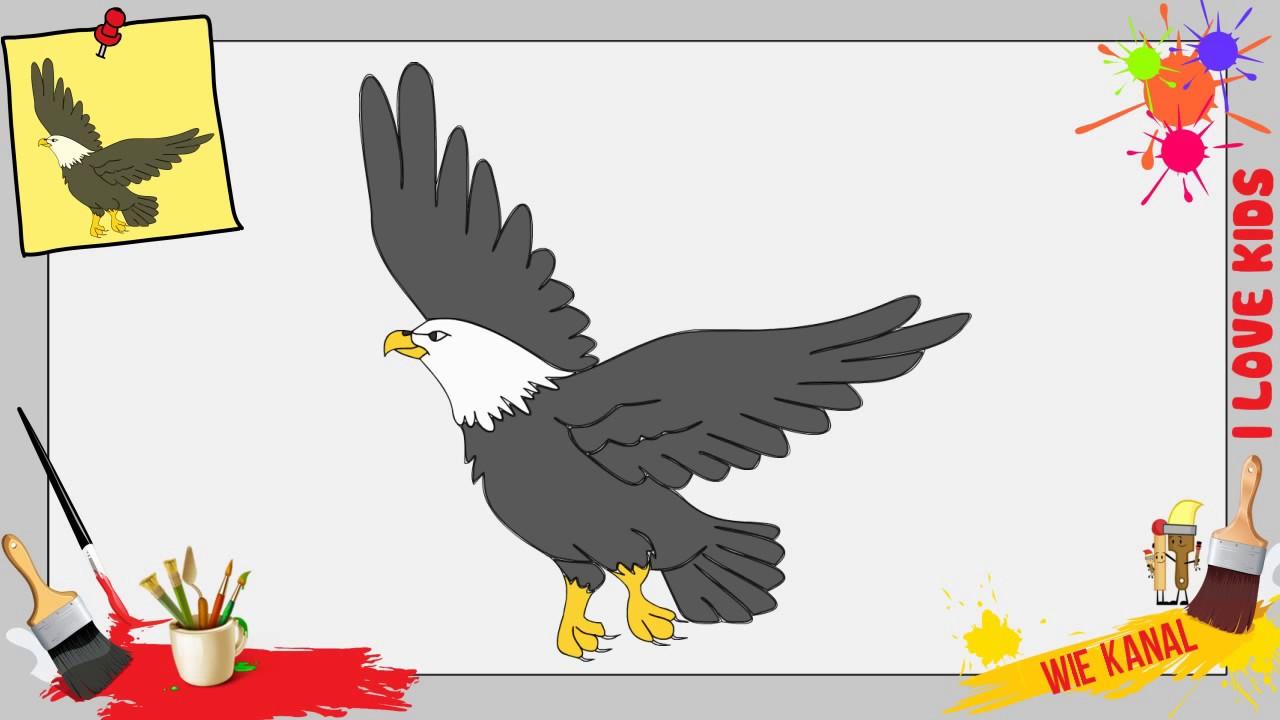Adler Zeichnen Schritt Fr Schritt Fr Anfnger Amp Kinder