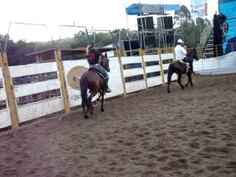 Quartel Kavei  Campeão cavalo MM ,Senhora das dores