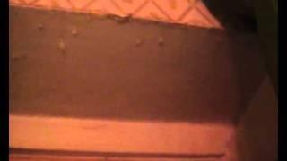 видео Из-за мартовских осадков протекает крыша жилого дома на проспекте Амирхана