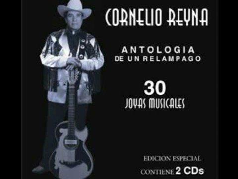 Amigos Del Alma- Ramon Ayala