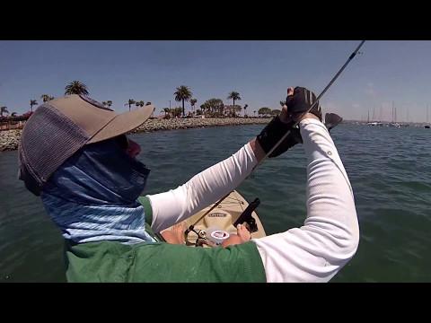 hookup baits halibut