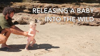 RELEASING A BABY INTO THE WILD