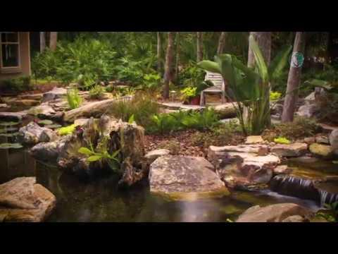 Universal Aquatics /Koi  Pond Builder & Maintenance In Atlanta