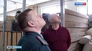 В Перми стартовала масштабная проверка противопожарной безопасности