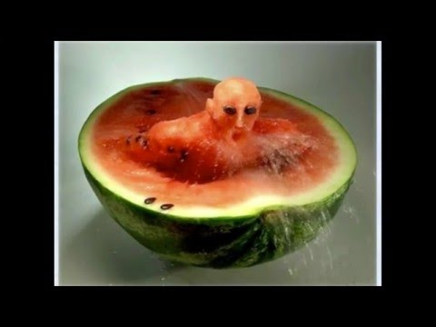 Amazing Food Art Ideas | Best Of Food Art | Awesome Plates Of Food | MichaelWilliams67