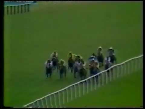 1982 Dubai Champion Stakes