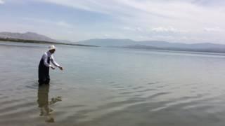 Malatya Fırat sazan avında 10 kg balık