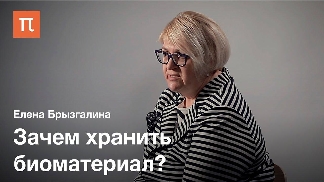 Биобанки — Елена Брызгалина / ПостНаука