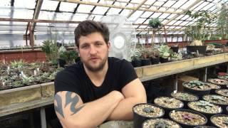 Что даёт человеку занятие растениями - доход, релакс, дисциплина и саморазвитие