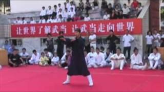 武当功夫—第三届世界武术节师行道长表演