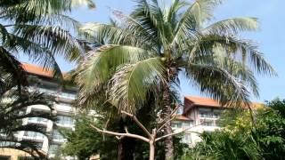 Парк отеля Renaissance Китай остров Хайнань