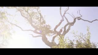 "Martin Tingvall - Music Video ""Last Summer"""