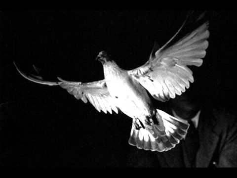 Jimmy Mach & Medla - Occult