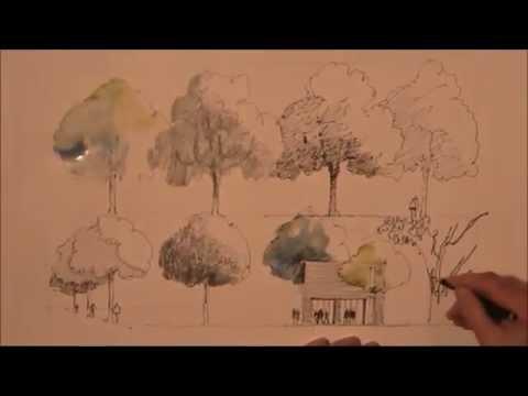 b ume zeichnen lernen youtube. Black Bedroom Furniture Sets. Home Design Ideas
