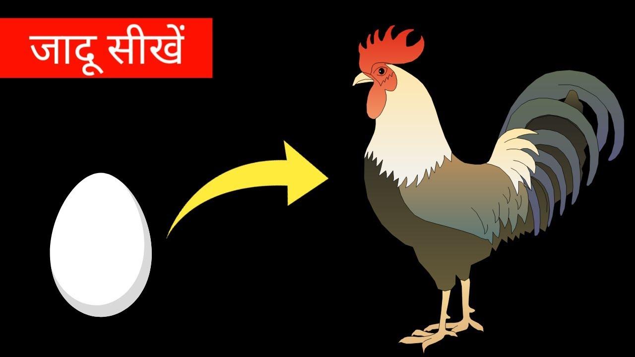 अंडे को मुर्गी बनाने का जादू सीखें - Hindi Magic Tricks