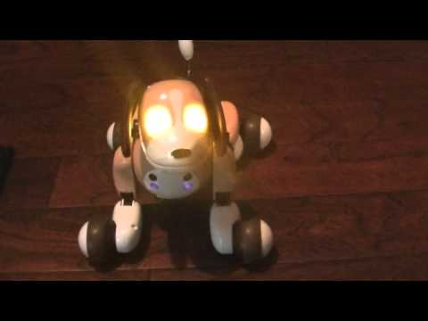 Video zoomer charging problem fix won t charge robot dog doesn t turn