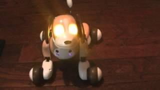 Zoomer 's Best Friend Bentley Robotic Dog
