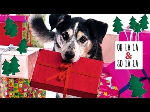 tierisch gut frohe weihnachten s er hund packt aus. Black Bedroom Furniture Sets. Home Design Ideas