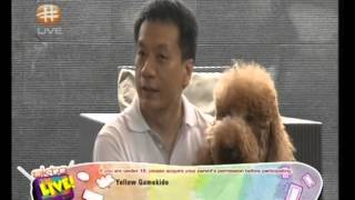 Dog Training In Singapore : The Dog Listener Consultancy Featured In Okto Live !