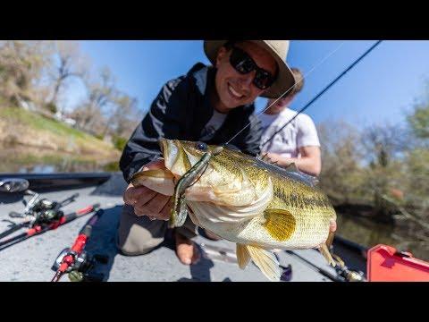 Catching BIG BEDDING Texas Bass (Road Trip Part 2)