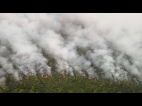 Firefighters battle last hot spot of forest fire in Inner Mongolia
