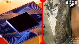mummified-dinosaur-foot-google-claim-quantum-supremacy-7-days-of-science
