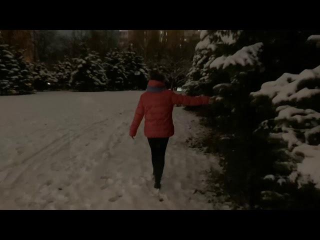 Изображение предпросмотра прочтения – АлександраЗаблоцкая читает произведение «Я по первому снегу бреду» С.А.Есенина