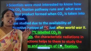 IPUC |Biology | Photosynthesis in higher plants -04