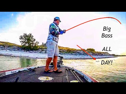 INSANE Topwater Action In A BASS Tournament (Nebraska TBF///Lake McConaughy)