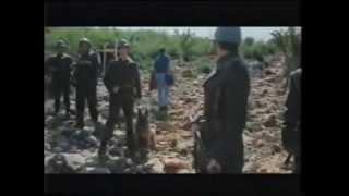Gospa, El milagro de Medjugorje - 1994